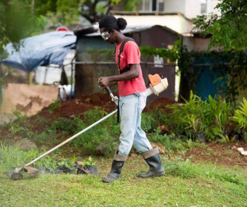 Worker Cutting School Ground
